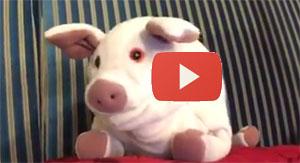 Video: Paco explains deflate-gate