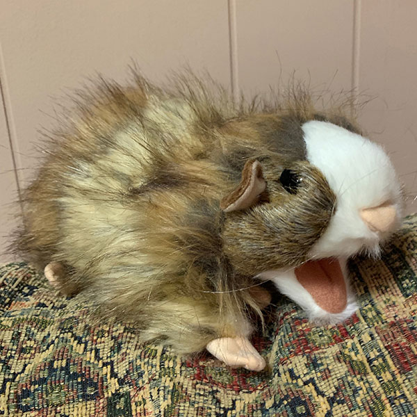 Vinnie The Guinea Pig puppet